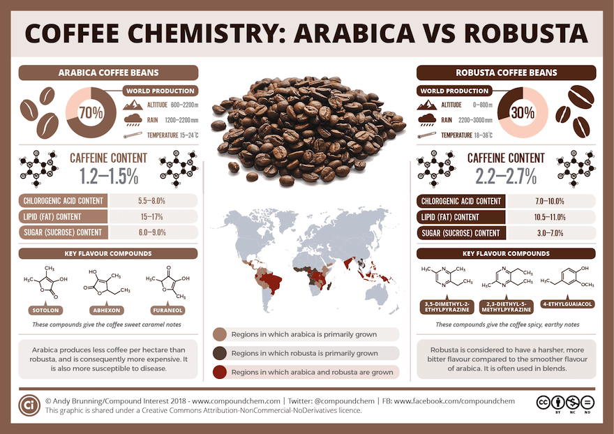 Coffee chemistry infographic