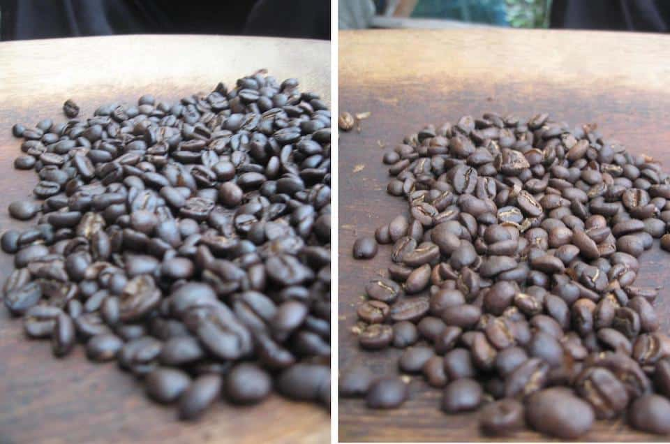 Dark roast and medium roast coffee beans