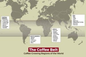 The Coffee Belt: A guide to the world's coffee-growing regions