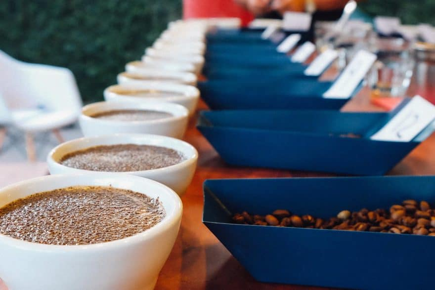 Cupping coffee after roasting