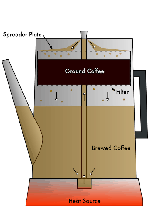 Diagram of an electric coffee percolator in cross-section