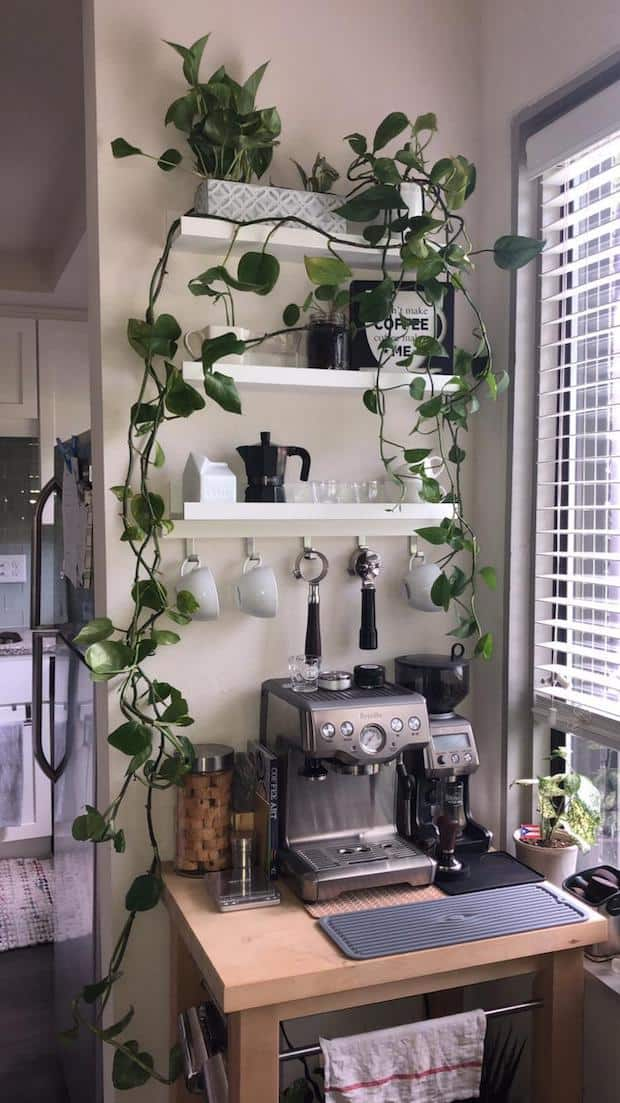 Coffee station that makes great use of surrounding wall space for shelves