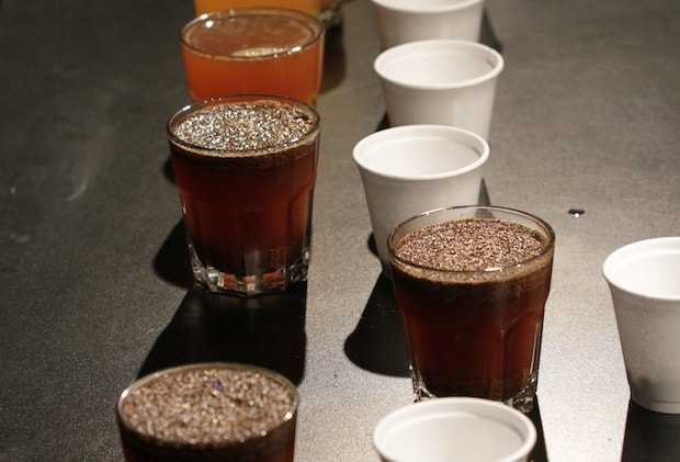 Coffee lined up in small glasses for a cupping